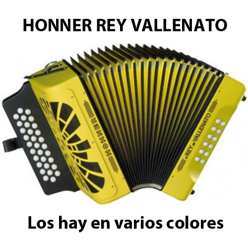 acordeon rey vallenato